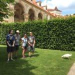 Wallenstein Tuin met witte pauwen